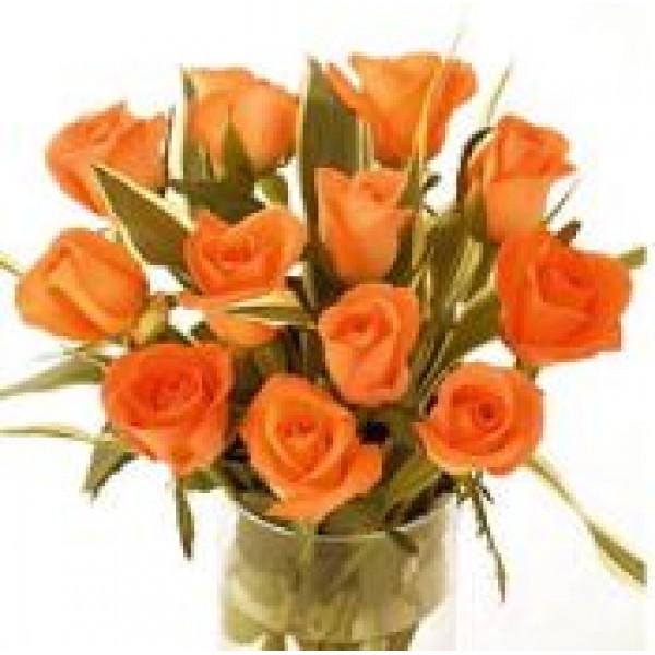 Salsa Orange 72032