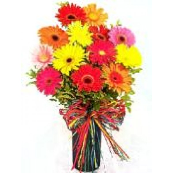 Gerberas Collection 72105