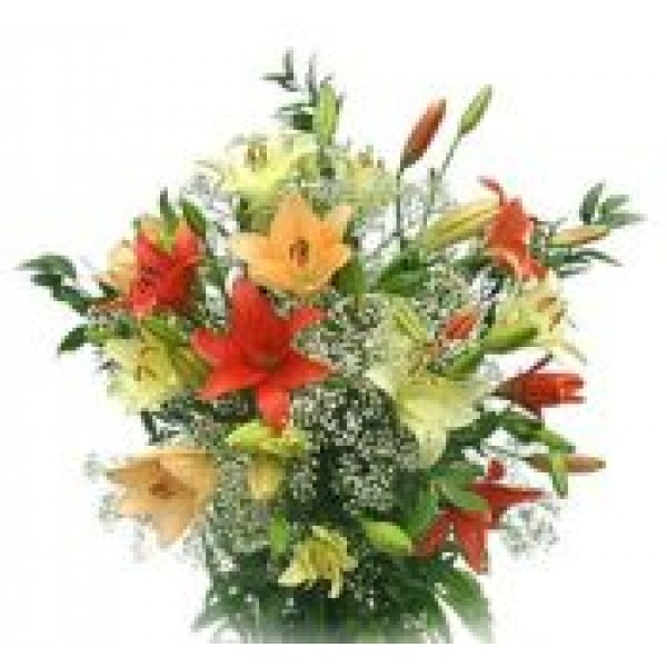 Asiatic Lilies 72130