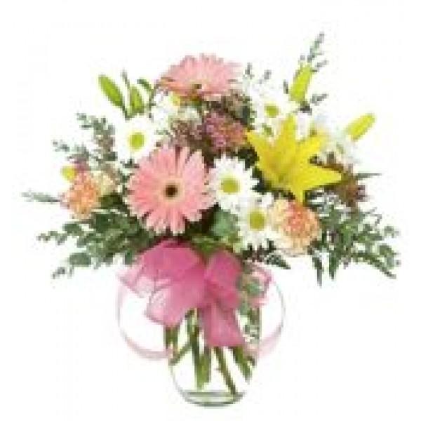 Lovely Spring 72153