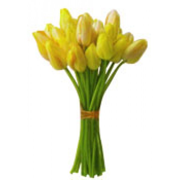 Hand Tied Tulips 72379