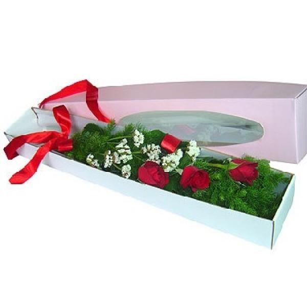 Boxed Romance