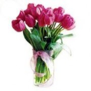 Tulips in a Vase 72076
