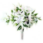 Oriental White 72161