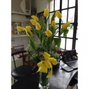 Valentine Lemon Tulips